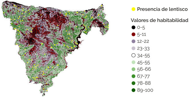 Identificación de comunidades vegetales, flora y fauna